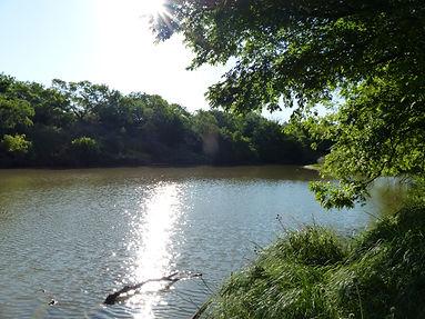 155 Acres on the Colorado River