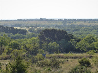 57 Acres in McCulloch County