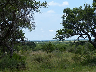 30.5 Acres in McCulloch County - SOLD
