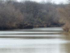 967 Acres on the Colorado River - Guajolote Ranch