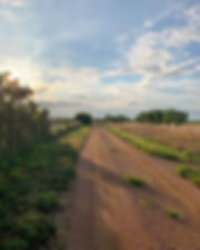 Country Road in Central Texas