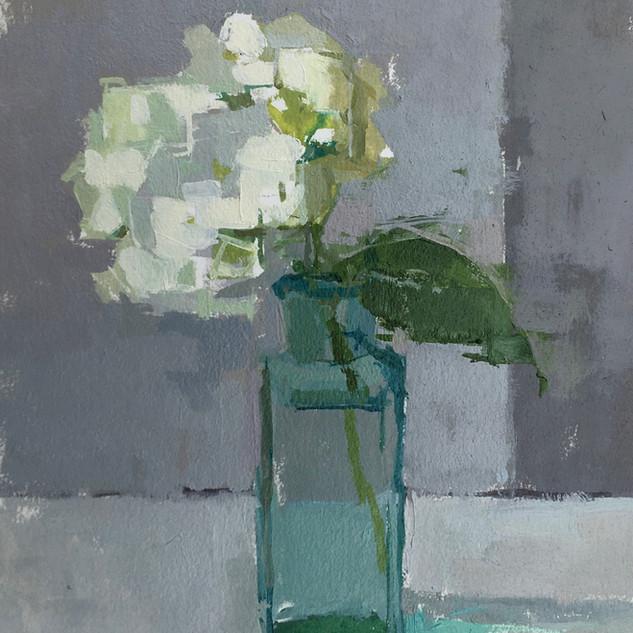 Small White Hydrangea