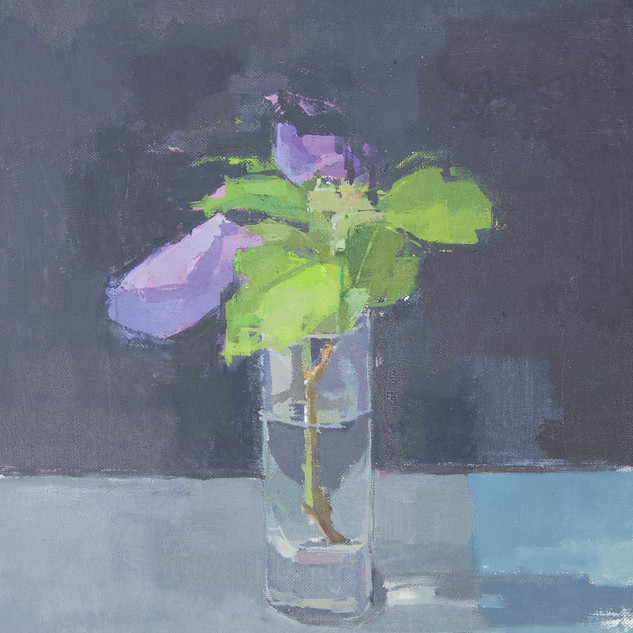 Spackman-Hibiscus Flower.jpeg