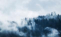 _foggy-forest-landscape.jpg