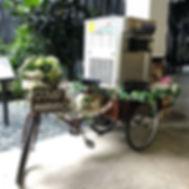 #hortpark #weddingsg #softserve #icecreamsg #sgwedding #tricycle #justmarried #malaywedding