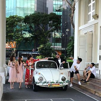 beetle5.jpg