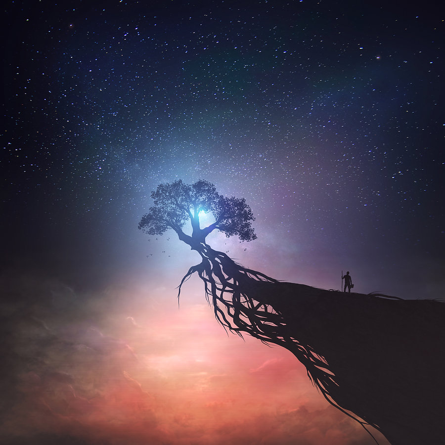 a-single-tree-on-top-of-a-cliff-under-a-