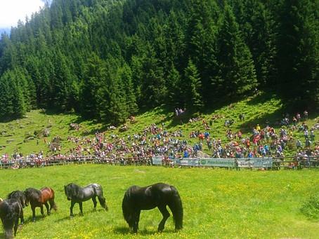 Πως μια μονομαχία αλόγων προσελκύει 2.000 θεατές