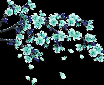 flowers-teal.png