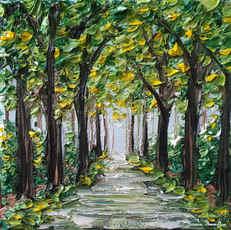 Trees of Summer.jpg