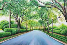 David Tree Driveway v3.jpg