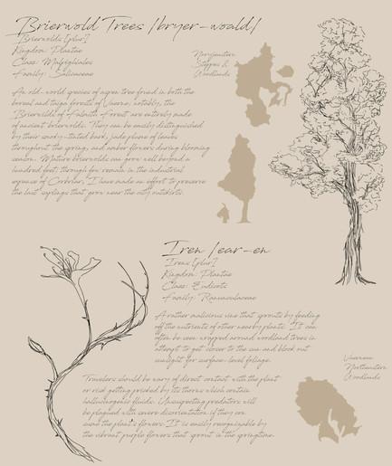 02 Field Guide Page 4.jpg