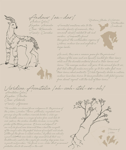 02 Field Guide Page 1.jpg