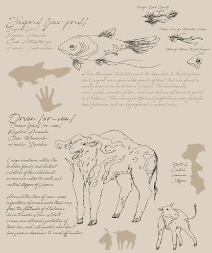 02 Field Guide Page 3.jpg