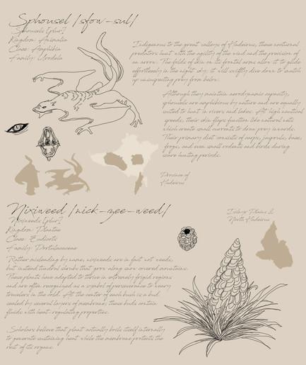 02 Field Guide Page 6.jpg
