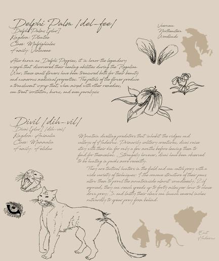 02 Field Guide Page 2.jpg