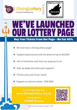 lottery page.jpg