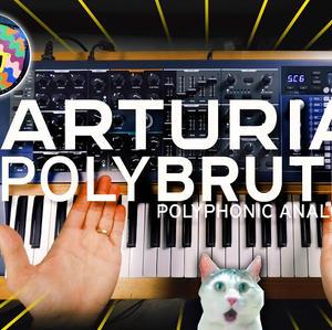 Polybrute Video