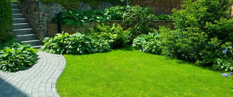 garden design in Mitcham South London