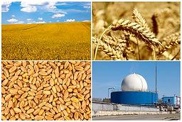 biomass-biogas-heating