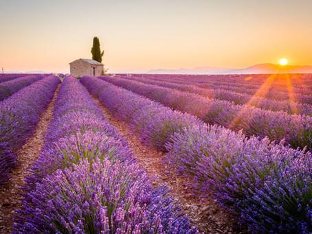 Urlaub in der Provence