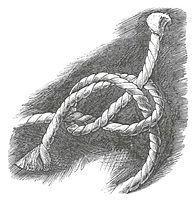 Knot drawing 1.jpg