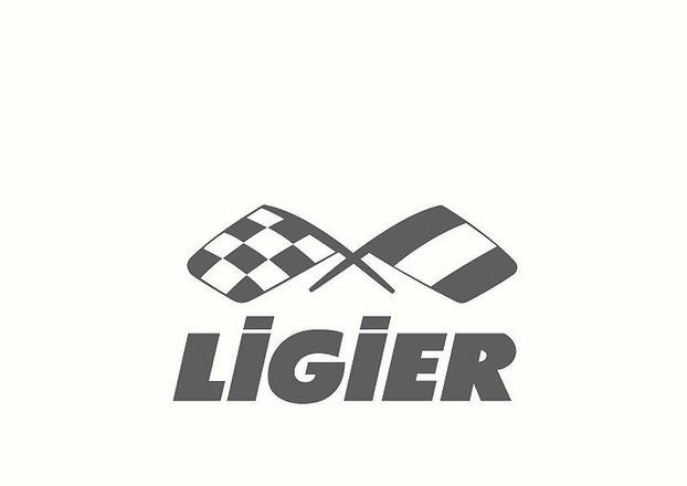 EXE LOGO LIGIER 2017.jpg