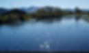 Kayaking coromandel