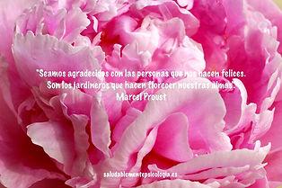 florecer.jpg