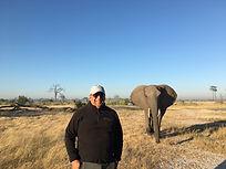 AD Elephant Behind.JPG