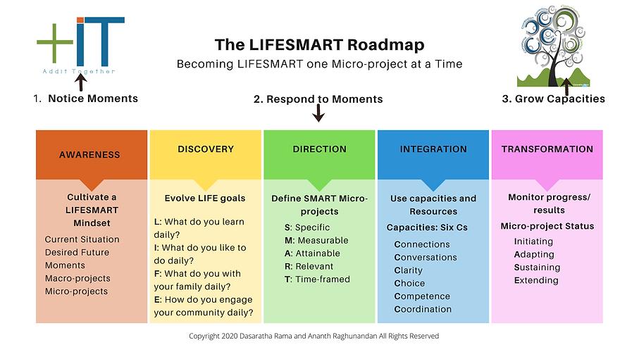 LIFESMART Roadmap.png