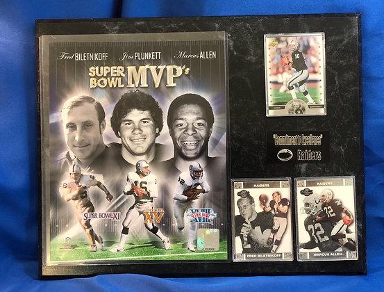 Raiders Super Bowl MVP Allen blientkoff plunkett 12x15  sports plaque
