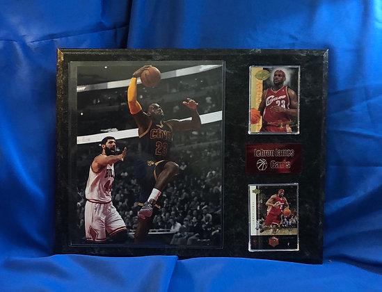 LeBron James Cavs 12x15 sports plaque
