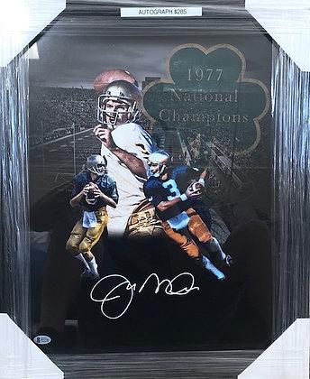 Joe Montana signed Notre Dame 16x20 Beckett certified