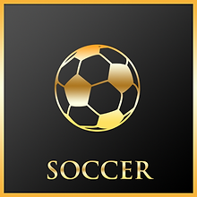 Collections_Icons_Soccer.png