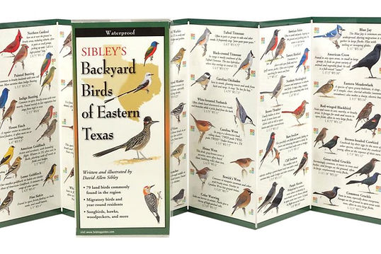 Sibley's Field Guide.jpg