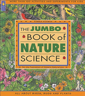 Jumbo Book.jpg