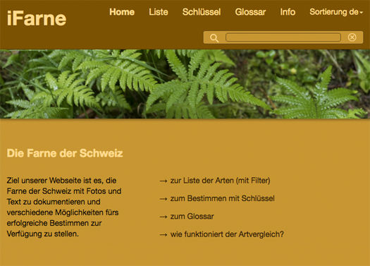 iFarne-Startseite.jpg