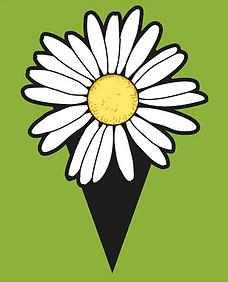 Iconleucanthemum_klein.png