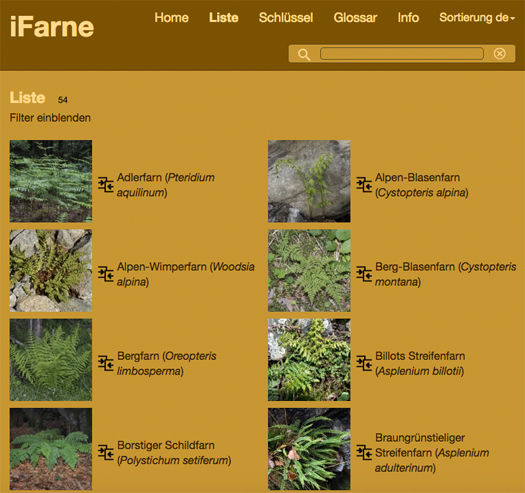 iFarne-Artenliste.jpg