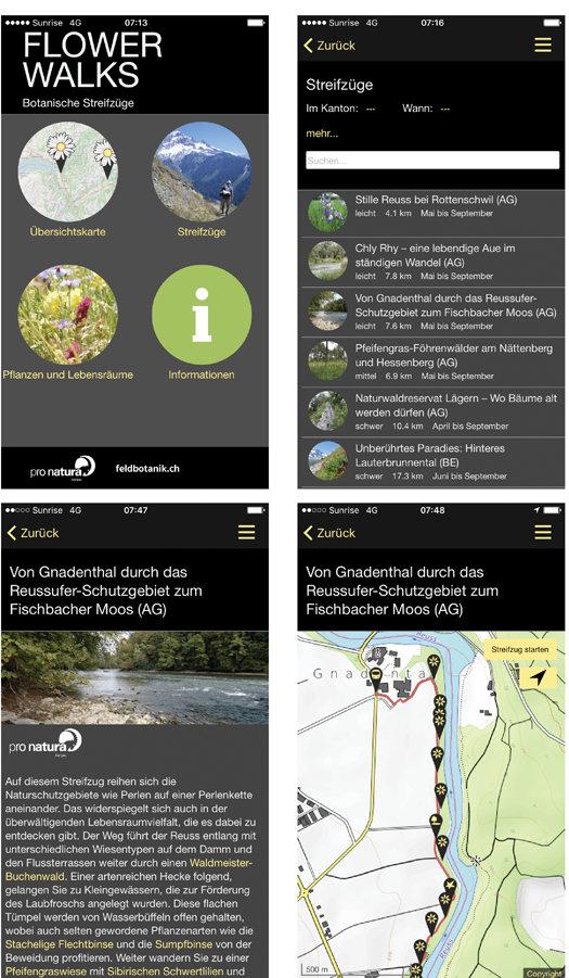 Web_Zusammenstellung_Screenshots_1_klein