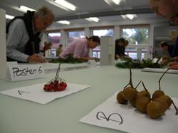 Feldbotanikkurs, Postenlauf Herbst