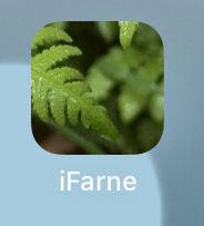 iFarne-App-Icon-Smartphone.jpg
