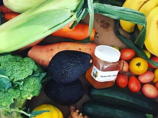 The Valleys Hidden Gem - Freemans Organic Farm 🚜