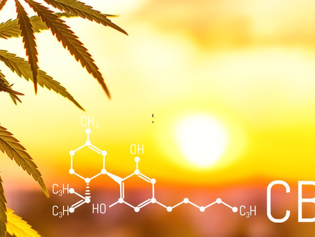 What Micro-Dosing CBD Is And How It Is Good For Overall Health And Wellbeing?
