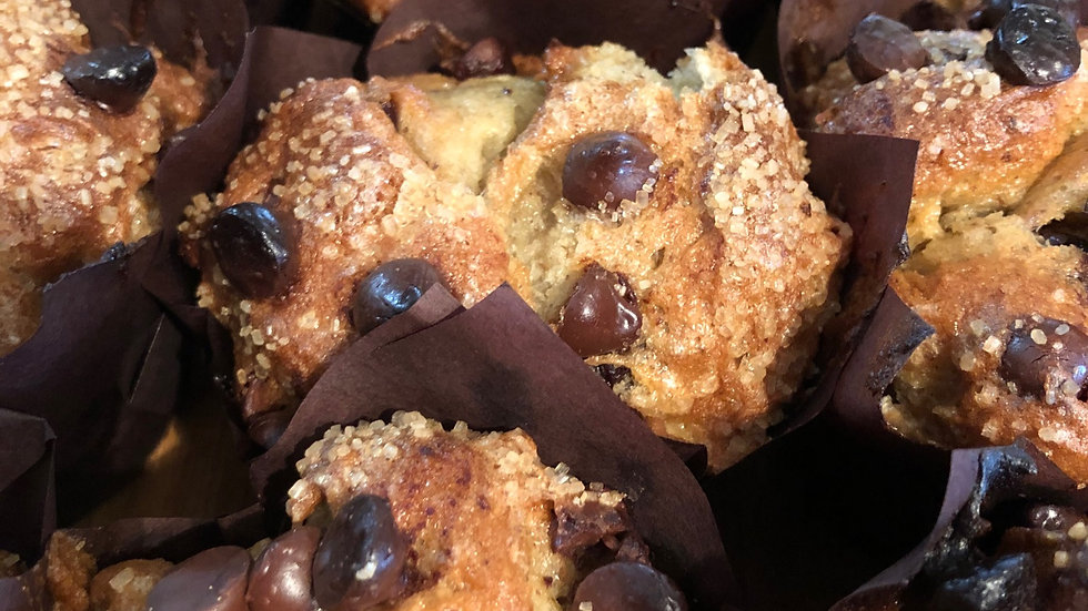 Vegan Gluten Free Chocolate Chip Muffin