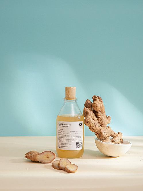 Dầu Gội Gừng Hữu Cơ/ Ginger Organic Shampoo