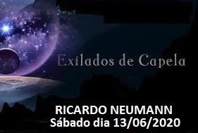 Palestra de Ricardo Neumann pelo Zoom
