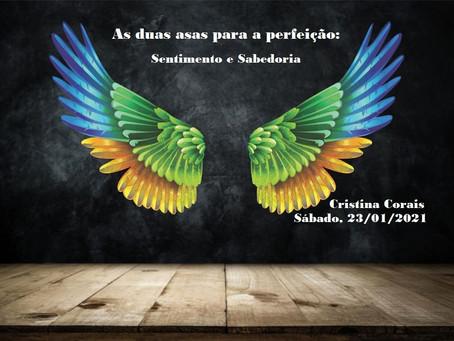 Palestra de Cristina Corais pelo Zoom