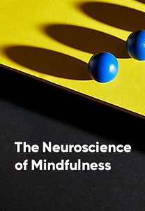 The Neuroscience of Mindfulness - FrontT